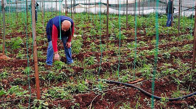 Tarımsal kalkınmada hibe için son 3 gün