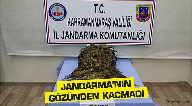 Jandarma'nın gözünden kaçmadı