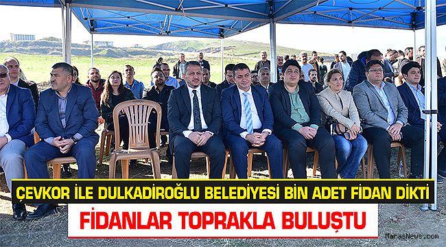 ÇEVKOR ile Dulkadiroğlu Belediyesi bin adet fidan dikti