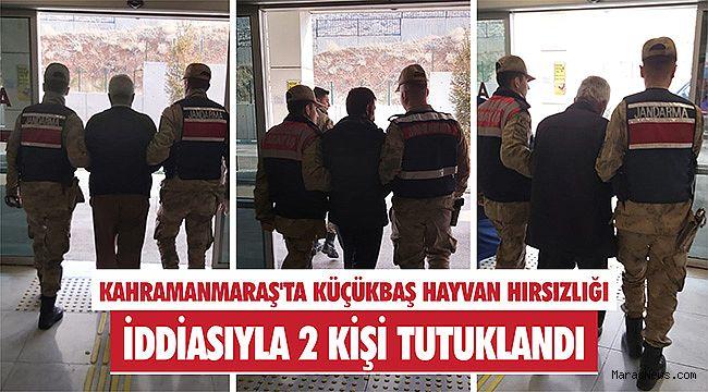 Kahramanmaraş'ta küçükbaş hayvan hırsızlığı iddiasıyla 2 kişi tutuklandı