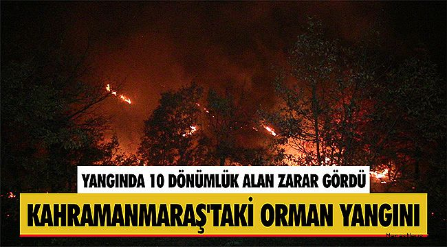 Kahramanmaraş'taki orman yangını