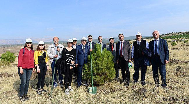 KSÜ'den 11 Milyon Ağaç kampanyasına tam destek