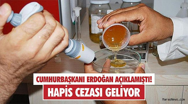Erdoğan açıklamıştı! Hapis cezası geliyor