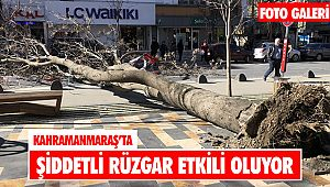 Kahramanmaraş'ta şiddetli rüzgar etkili oluyor