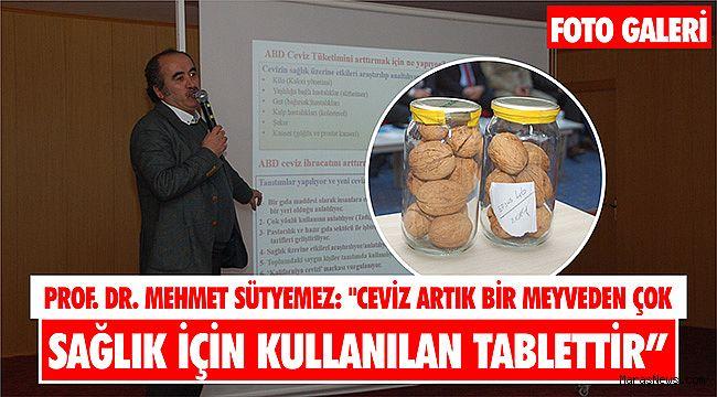 Prof. Dr. Mehmet Sütyemez: