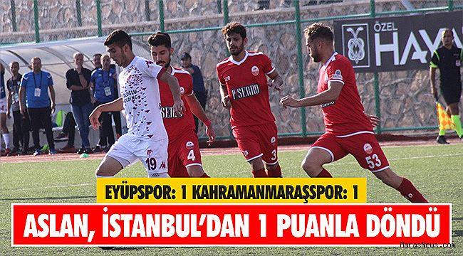 Aslan İstanbul'dan 1 puanla döndü