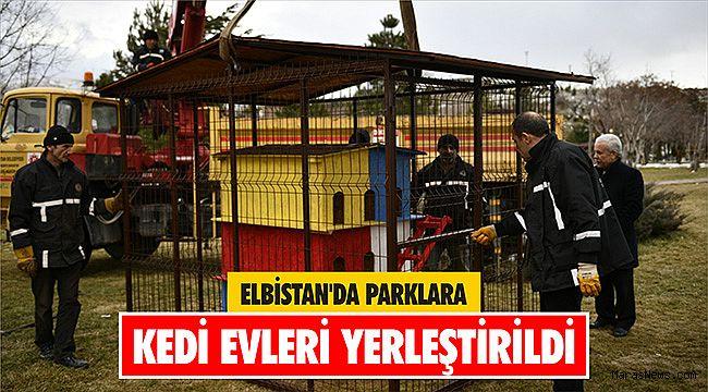 Elbistan'da parklara kedi evleri yerleştirildi