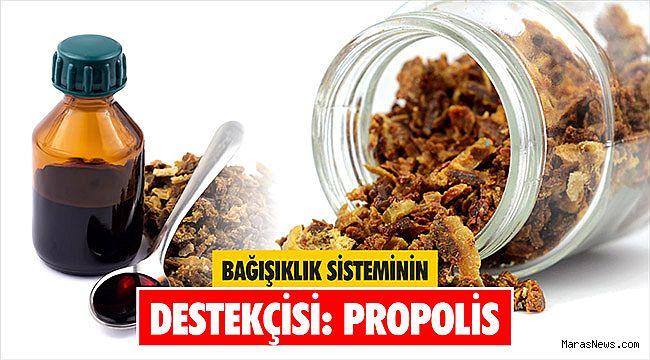 Bağışıklık Sisteminin Destekçisi: Propolis