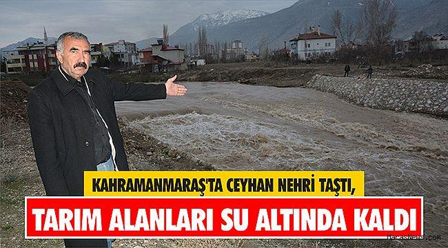 Kahramanmaraş'ta Ceyhan Nehri taştı, tarım alanları su altında kaldı