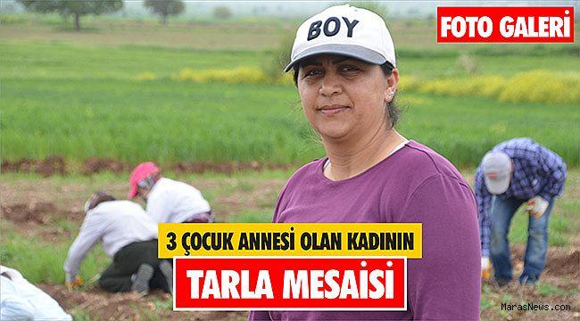 3 çocuk annesi olan kadının tarla mesaisi