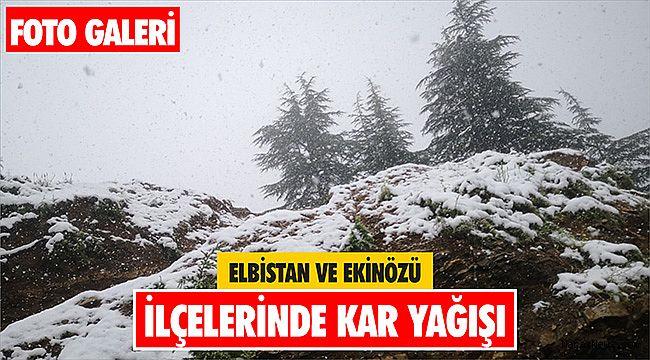 Elbistan ve Ekinözü ilçelerinde kar yağışı