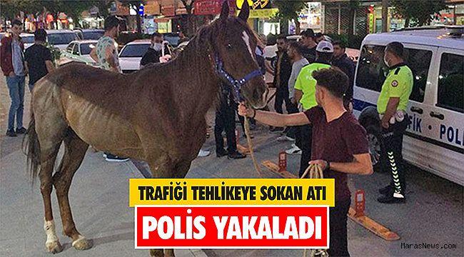 Trafiği tehlikeye sokan atı polis yakaladı
