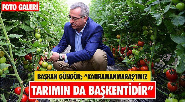 Başkan Güngör: