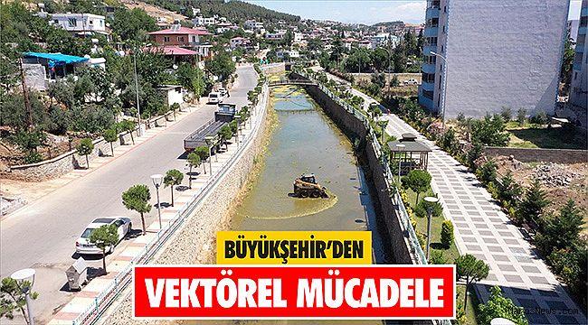 Büyükşehir'den vektörel mücadele