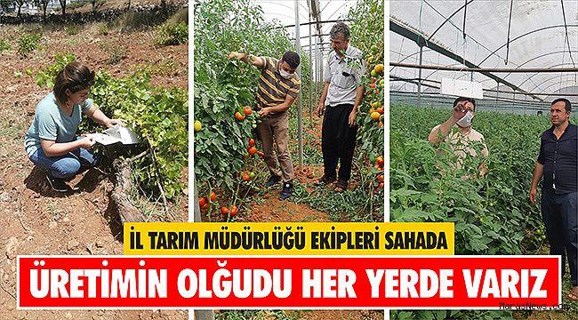 İl Tarım Müdürlüğü Ekipleri Sahada