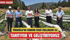 Türkoğlu'nu kendine özgü özellikleri ile tanıtıyor ve geliştiriyoruz