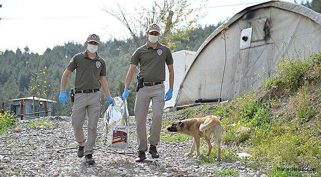 Kahramanmaraş'ta polis ekipleri sokak hayvanlarına can oldu