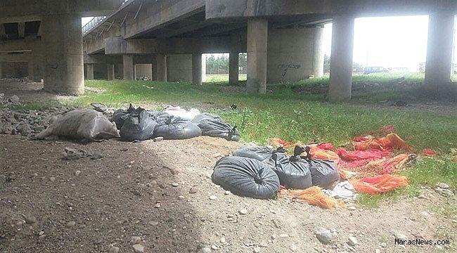 Kahramanmaraş'ta vatandaşlar çevre kirliliğini görüntüledi